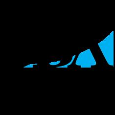 SBA_8a_logo